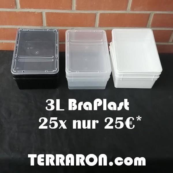 25 x BraPlast Dose 3l schwarz
