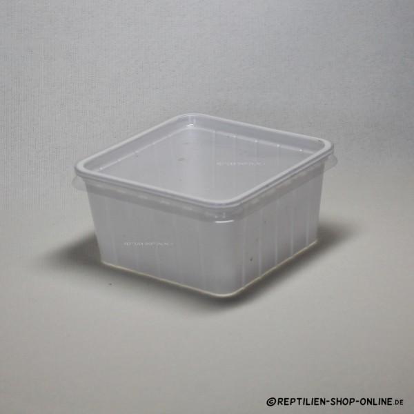 Tier-Box M weiß